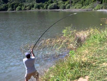 Осенния рыбалка на удочку 7 метров